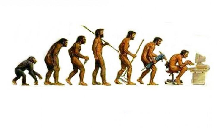 cultural-evolution